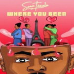 MUSIC: Sean Tizzle – Where You Been (EP)